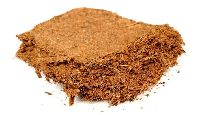 Compressed Chunk of Coco Coir