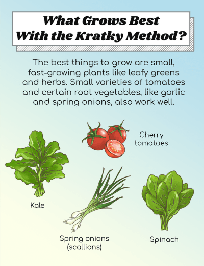 What Grows Best With The Kratky Method