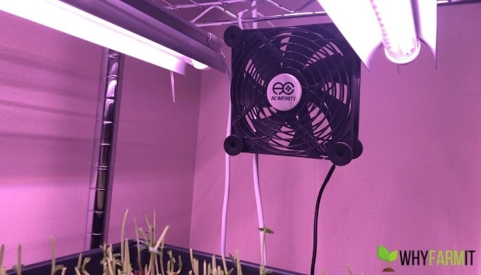 Small Fan For Growing Microgreens