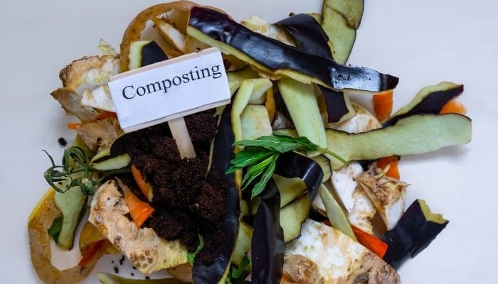 """A small pile of food scraps with a sign stuck in the middle that reads """"Composting."""""""