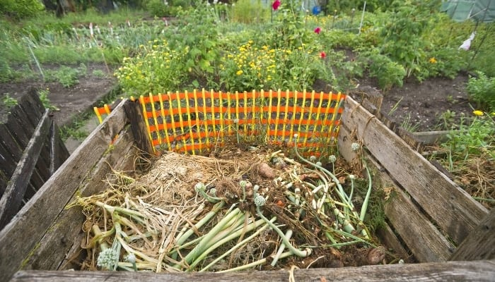 Cold Compost Pile In Garden