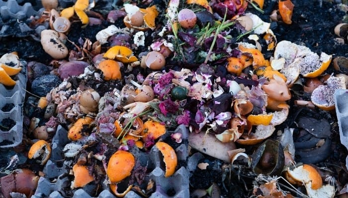 Various composting materials, including egg cartons and orange peels, in a heap.