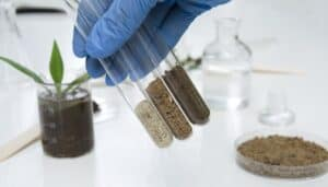 Soil Being Tested In A Lab