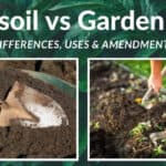 Topsoil vs Garden Soil