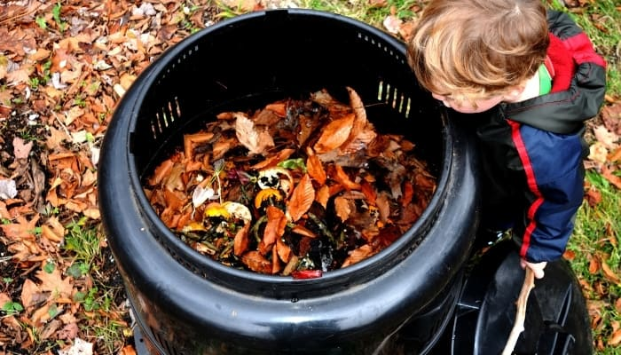 Young Boy Looking Into A Compost Bin