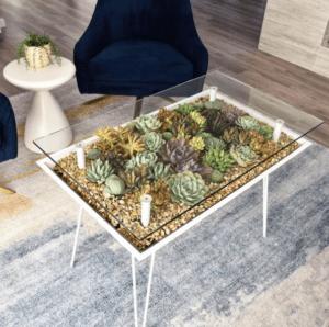 BloomingTables Coffee Table Terrarium