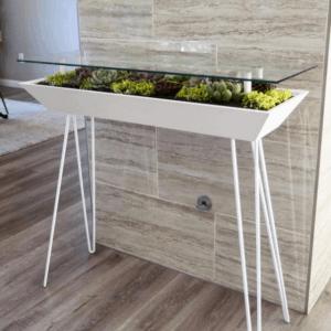 Blooming Tables-Entryway Terrarium Table