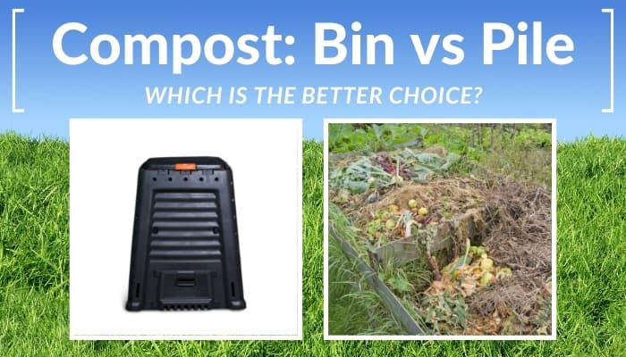 Compost Bin and Pile Compared