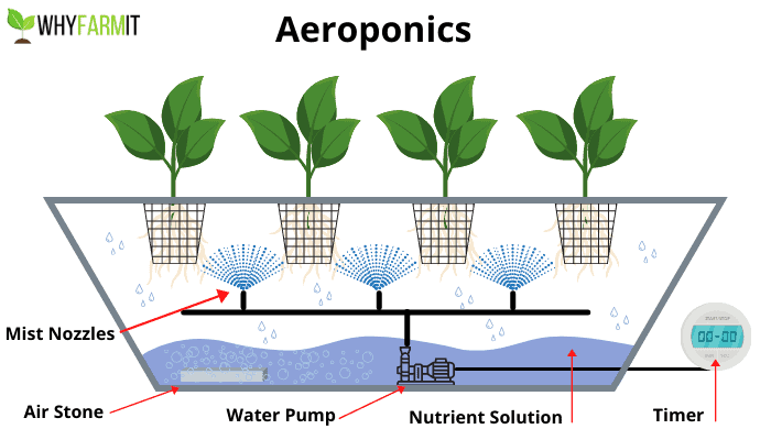 Diagram showing the basics of aeroponics