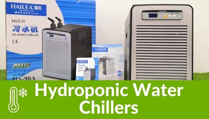 Hydroponic Water Chiller System
