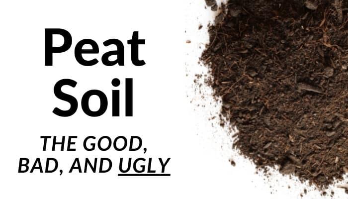 Peat Soil Good and Bad