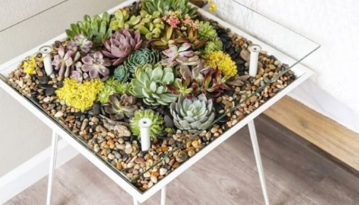 Terrarium Table Bedside With Glass Top