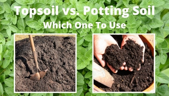 Large pile of topsoil on the left, and a container of potting soil on the right.
