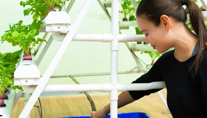 A young woman tending to her tiered hydroponic setup.