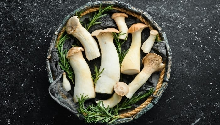 King oyster mushrooms arranged in a bowl with sprigs of rosemary.