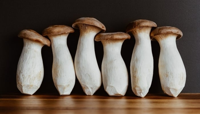 Six king oyster mushrooms standing on a gleaming wood table against a black wall.